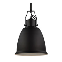 Hobson 1 Light 14 inch Oil Rubbed Bronze Pendant Ceiling Light in Standard