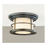 Feiss Lighthouse 2 Light Outdoor Flush Mount in Burnished Bronze OL2213BB