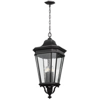 Cotswold Lane 14 inch Black Outdoor Hanging Lantern in Clear Seedy Glass