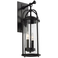 Feiss OL7622ES Dakota 21 inch Espresso Outdoor Wall Lantern