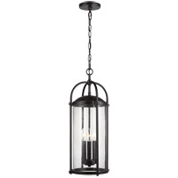 Dakota 10 inch Espresso Outdoor Hanging Lantern