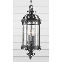 Feiss Chancellor 2 Light Outdoor Hanging Lantern in Black Sable OL7811BSB