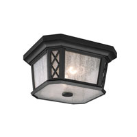 Feiss Wembley Park 2 Light Outdoor Lantern Flushmount in Textured Black OL9513TXB