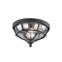 Feiss River North 2 Light Outdoor Lantern Flushmount in Textured Black OL9812TXB
