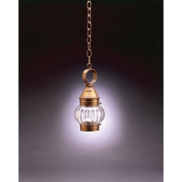 Northeast Lantern Onion 1 Light Hanging Lantern in Antique Brass 2012-AB-MED-OPT