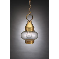 Northeast Lantern 2022-AB-MED-CLR Onion 1 Light 7 inch Antique Brass Hanging Lantern Ceiling Light in Clear Glass photo thumbnail