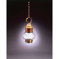 Northeast Lantern Onion 1 Light Hanging Lantern in Antique Brass 2032-AB-MED-OPT
