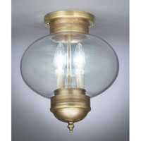 Onion 2 Light 10 inch Raw Brass Flush Mount Ceiling Light in Clear Glass