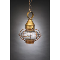 Northeast Lantern Onion 1 Light Hanging Lantern in Antique Brass 2522-AB-MED-CLR