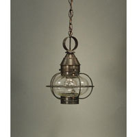 Northeast Lantern Onion 1 Light Hanging Lantern in Dark Brass 2522-DB-MED-OPT