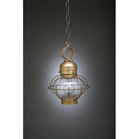 Onion 1 Light 9 inch Antique Brass Hanging Lantern Ceiling Light in Clear Glass