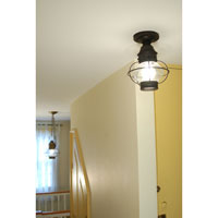 Northeast Lantern Onion 1 Light Flush Mount in Dark Brass 2524-DB-MED-CLR