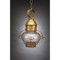 Onion 1 Light 11 inch Antique Brass Hanging Lantern Ceiling Light in Clear Glass