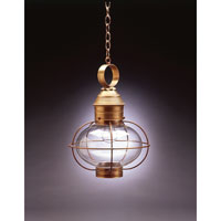 Northeast Lantern Onion 1 Light Hanging Lantern in Antique Brass 2542-AB-MED-CLR