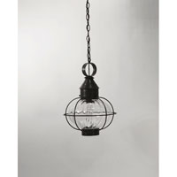 Northeast Lantern Onion 1 Light Hanging Lantern in Dark Brass 2542-DB-MED-OPT