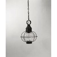 Northeast Lantern 2542-DB-MED-OPT Onion 1 Light 12 inch Dark Brass Hanging Lantern Ceiling Light in Optic Glass, Medium