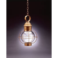 Onion 1 Light 12 inch Antique Brass Hanging Lantern Ceiling Light in Clear Glass