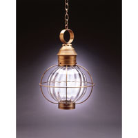Northeast Lantern Onion 1 Light Hanging Lantern in Antique Brass 2842-AB-MED-OPT