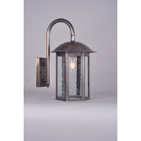 Northeast Lantern Aurora 1 Light Wall Lantern in Dark Antique Brass 3227-DAB-MED-CSG