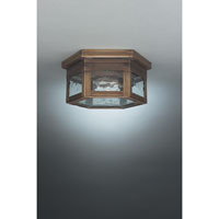 Williams 1 Light 11 inch Dark Antique Brass Flush Mount Ceiling Light in Clear Seedy Glass