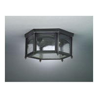 Williams 2 Light 13 inch Dark Brass Flush Mount Ceiling Light in Seedy Marine Glass
