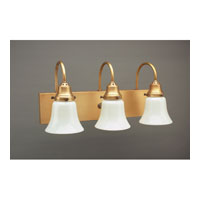 Northeast Lantern Signature 3 Light Wall Lantern in Antique Brass 4931-AB-MED3-38W