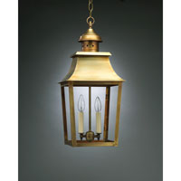 Sharon 2 Light 10 inch Antique Brass Hanging Lantern Ceiling Light in Clear Glass