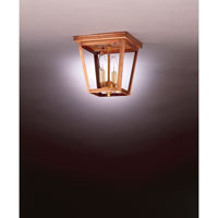 Williams 2 Light 8 inch Antique Copper Flush Mount Ceiling Light in Clear Glass