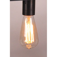 Northeast Lantern Light Bulbs