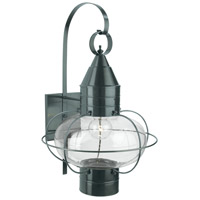 Norwell 1509-GM-CL Classic Onion 1 Light 24 inch Gun Metal Outdoor Wall in Clear, Large photo thumbnail
