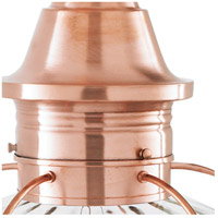Norwell 1611-CO-SE Vidalia Onion 1 Light 19 inch Copper Outdoor Post in Seedy, Medium
