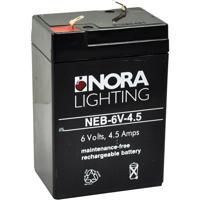 Nora Lighting NEB-6V-4.5 Aaliyah 1 Light Exit / Emergency Ceiling Light