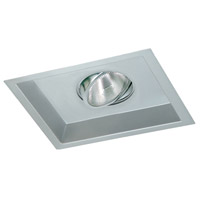 Silver Ceiling Light