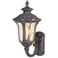 Beaumont 2 Light 22 inch Fruitwood Outdoor Wall Lantern
