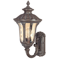 Nuvo 60/2005 Beaumont 1 Light 19 inch Fruitwood Outdoor Wall Lantern