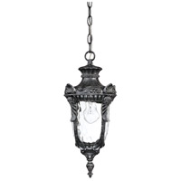 Nuvo Lighting Dunmore 1 Light Outdoor Hanging Lantern in Greystone 60/2025 photo thumbnail