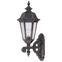 Nuvo Lighting Cortland 1 Light Outdoor Wall Lantern in Satin Iron ore 60/2033