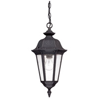 Nuvo 60/2038 Cortland 1 Light 9 inch Satin Iron ore Outdoor Hanging Lantern