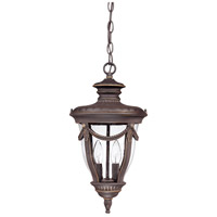 Philippe 2 Light 9 inch Belgium Bronze Outdoor Hanging Lantern