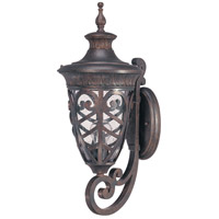 Nuvo Lighting Aston 1 Light Outdoor Wall Lantern in Dark Plum Bronze 60/2053