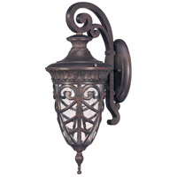 Nuvo Lighting Aston 1 Light Outdoor Wall Lantern in Dark Plum Bronze 60/2056