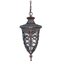 Nuvo Lighting Aston 1 Light Outdoor Hanging Lantern in Dark Plum Bronze 60/2058