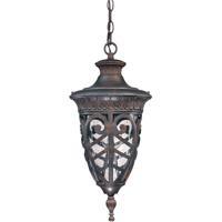 Nuvo 60/2058 Aston 1 Light 10 inch Dark Plum Bronze Outdoor Hanging Lantern