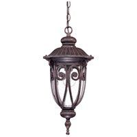 Corniche 1 Light 10 inch Burlwood Outdoor Hanging Lantern