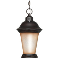 Nuvo Lighting Clarion 1 Light Outdoor Hanging Lantern with Photocell in Chestnut Bronze 60/2504 photo thumbnail