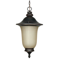 Nuvo Lighting Parisian 1 Light Outdoor Hanging Lantern in Old Penny Bronze 60/2509