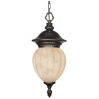 Nuvo Lighting Balun 1 Light Outdoor Hanging Lantern with Photocell in Chestnut Bronze 60/2514 photo thumbnail