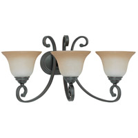 Montgomery 3 Light 24 inch Sudbury Bronze Vanity & Wall Wall Light