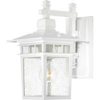 Nuvo 60/3491 Cove Neck 1 Light 12 inch White Wall Lantern