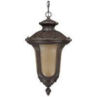 Nuvo Lighting Beaumont 1 Light Outdoor Hanging Lantern with Photocell in Fruitwood 60/3908